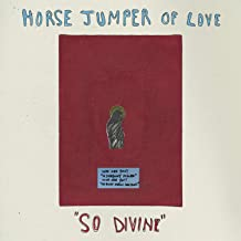Best horse jumper of love vinyl Reviews