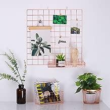 Kufox Multifunction Electroplated Bling Metal Mesh Grid Panel, Wall Decor / Photo Wall / Wall Art Display and Organizer, Pack of 1 Pcs, Size:23.6