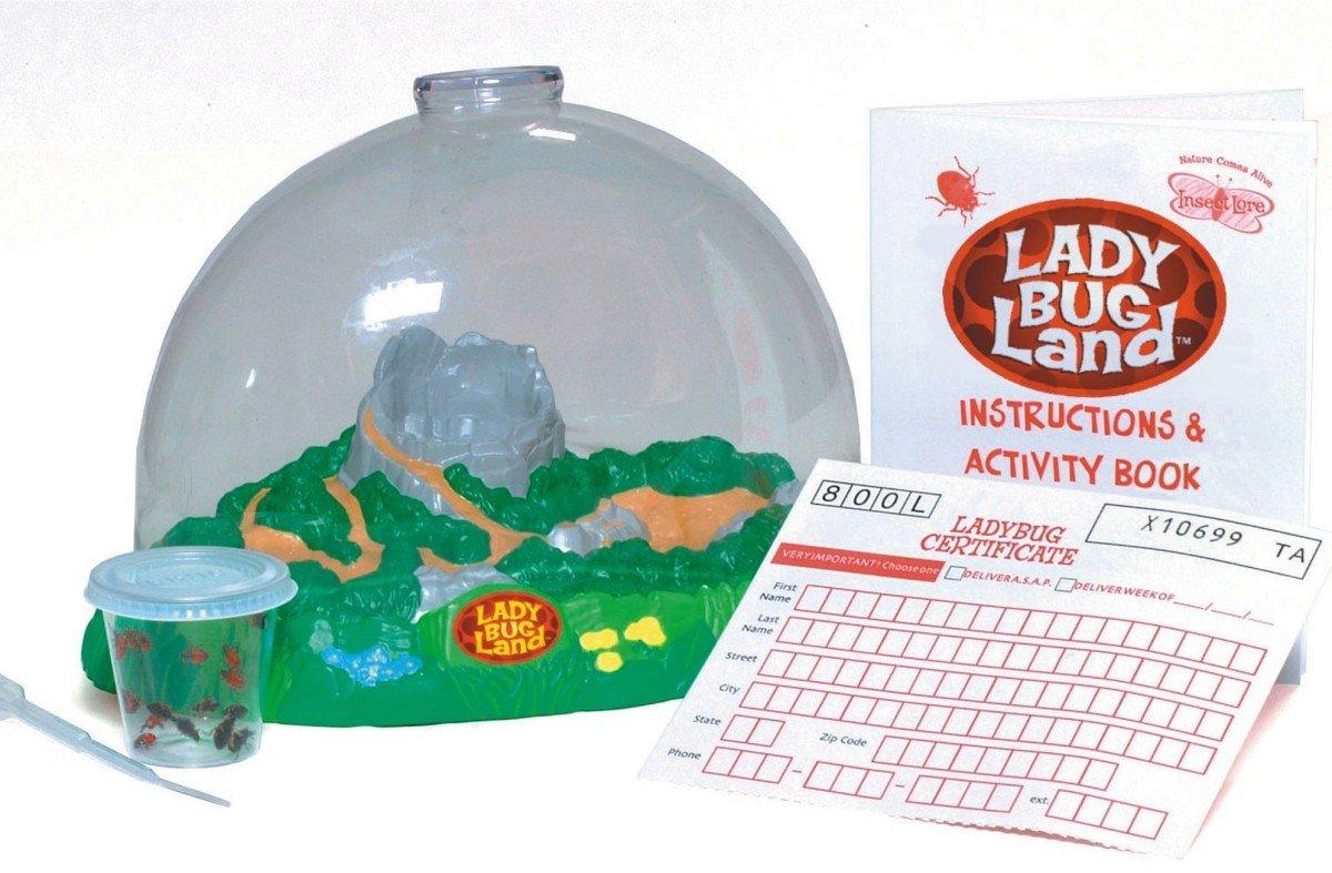Ladybug Land Kit- Max 57% OFF Charlotte Mall