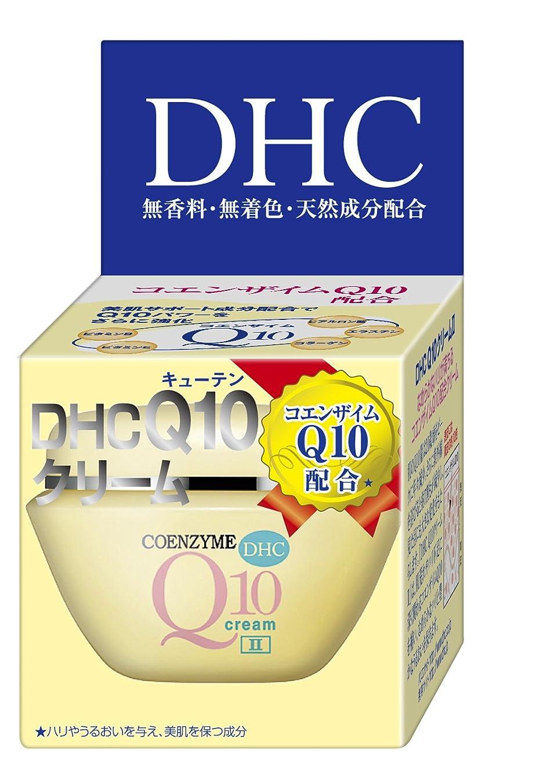 用心ゴシップ構想するDHC Q10クリームII (SS) 20g
