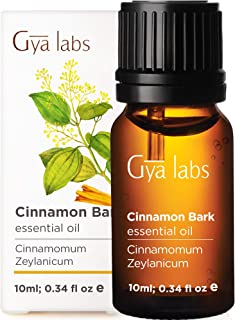 Gya Labs Cinnamon Bark Essential Oil - Health Booster for A Strong, Sore-Free Body (10ml) - 100% Pure Therapeutic Grade Ar...