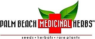 Marshmallow Root Tea - Pure Herbal Tea Series by Palm Beach Herbal Tea Company (30 Tea Bags) 100% Natural