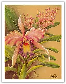 Pacifica Island Art Pink Cattleya Orchid Hawaii - Vintage Hawaiian Airbrush Art by Frank Oda (Hale Pua Studio) c.1940s - Hawaiian Fine Art Print - 11in x 14in