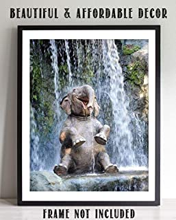 Young Elephant Laughing in Waterfall- 8 x 10
