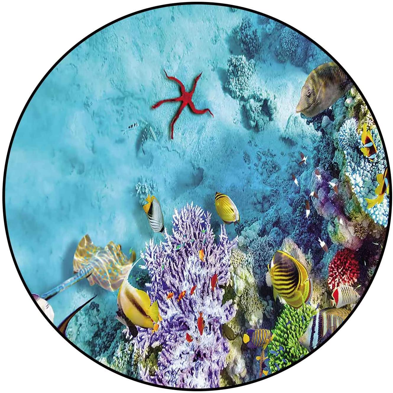 Protective Cushioning Rug Pad Beautiful Underwater and Wonderful Max 74% OFF Popular product