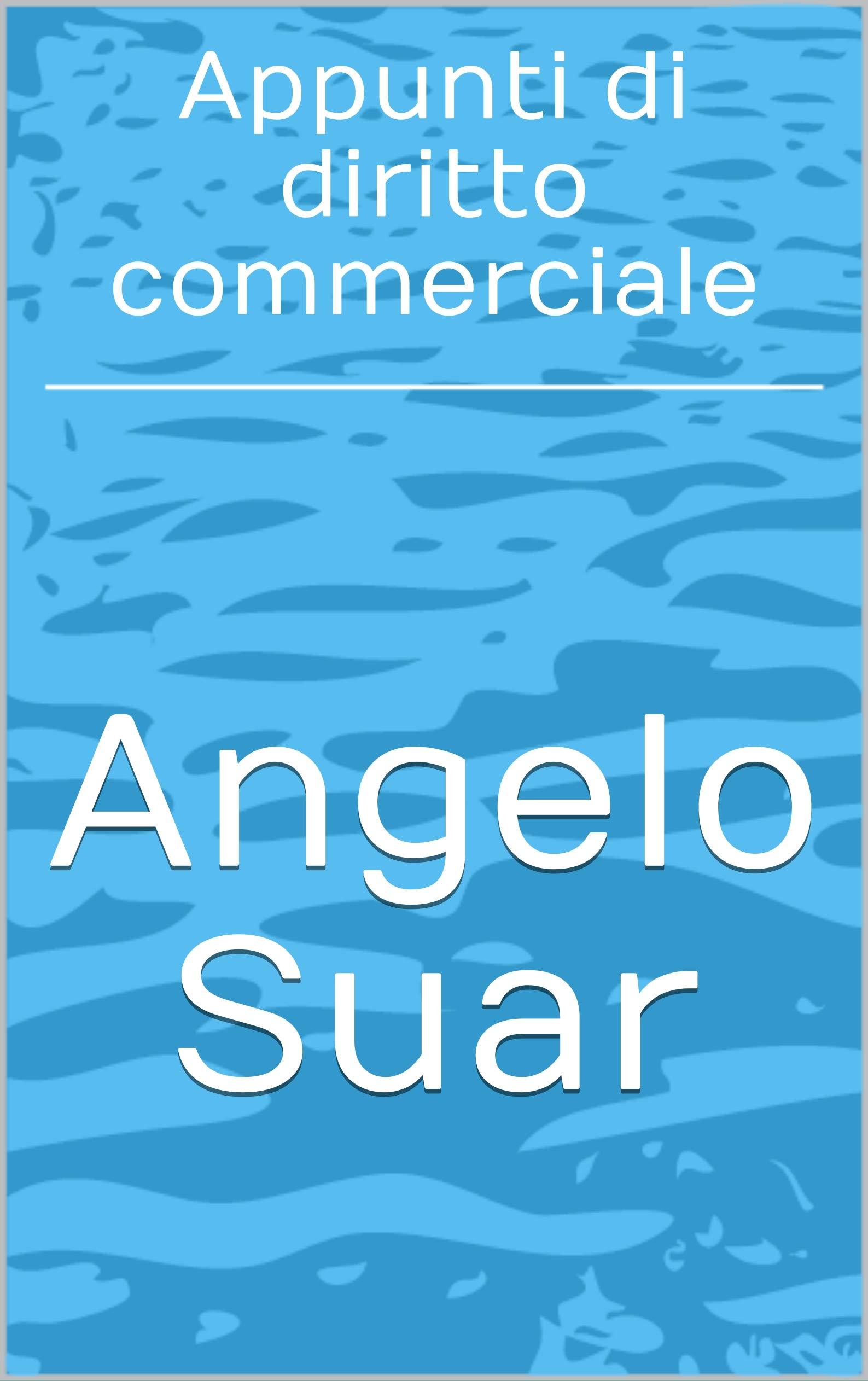 Appunti di diritto commerciale (Italian Edition)