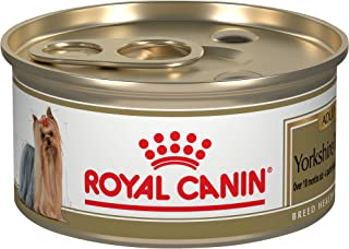 Royal Canin Nutrition Yorkshire Terrier