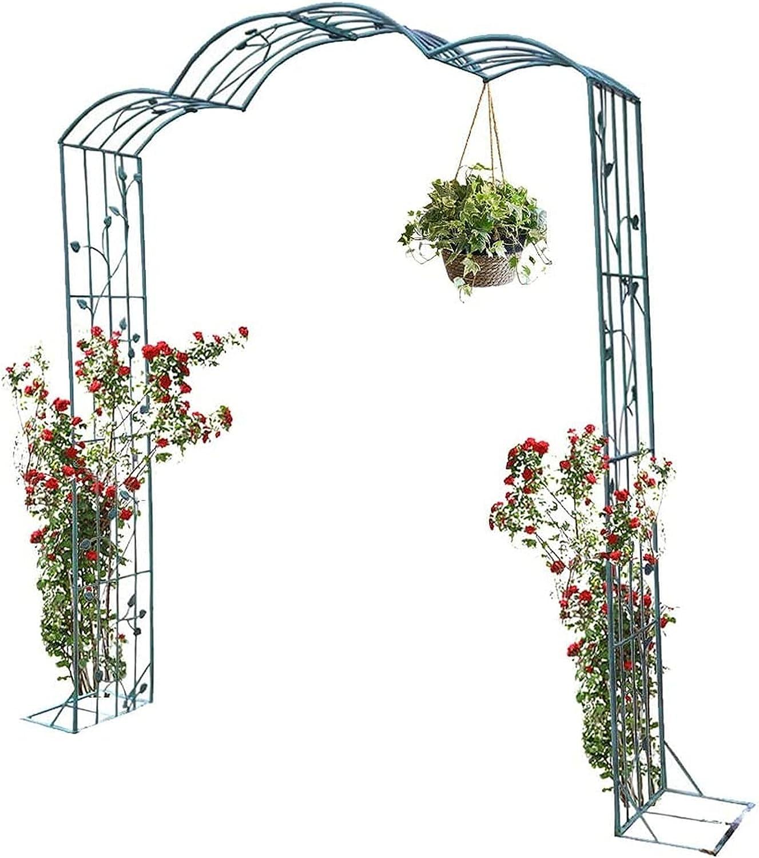 GAXQFEI Steel Frame Ranking TOP12 Garden Arch Grape Oklahoma City Mall Climbing Flow Roses
