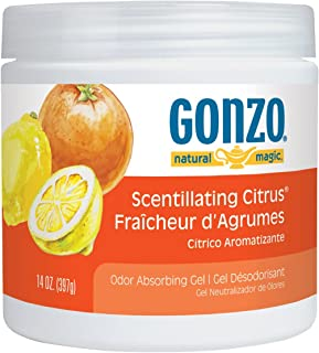 Gonzo Natural Magic Air Purifying Gel, Odor Eliminator for Cars, Closets, Bathrooms and Pet Areas, Captures and Absorbs Or...
