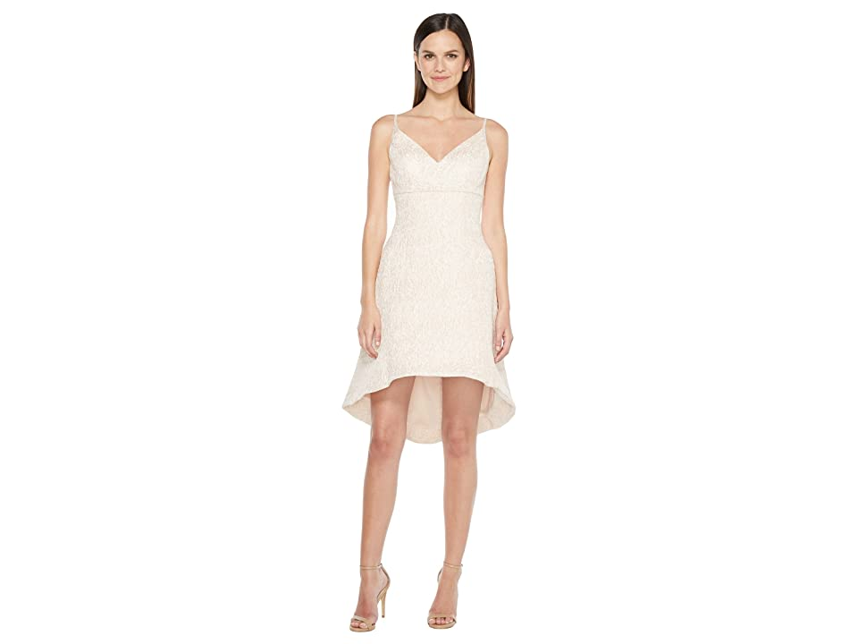 Aidan Mattox Jacquard Fit and Flare Dress (Petal) Women