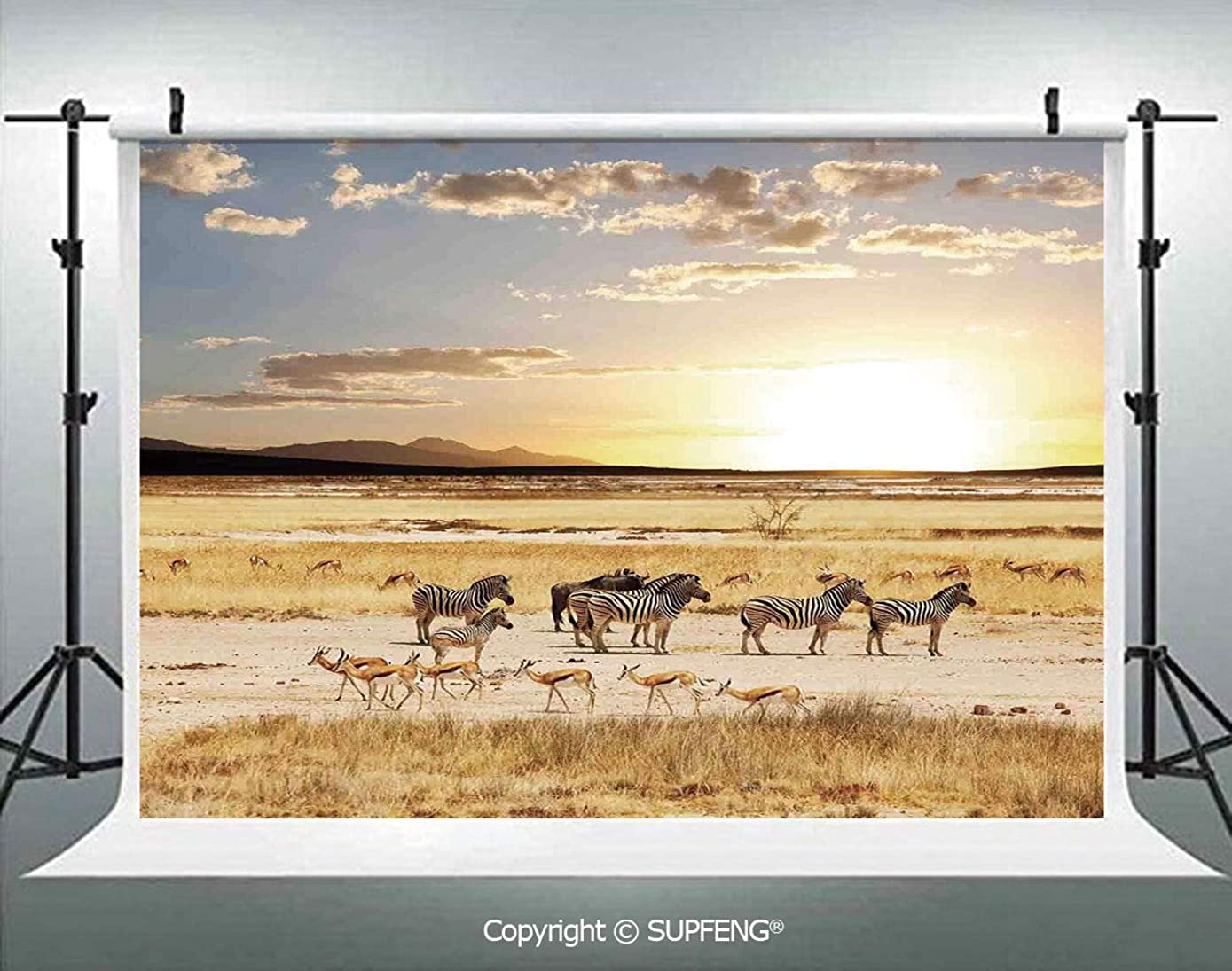 Photography Backdrops Zebras with Their Striped Coats in Savannahs Sunset Adventure Africa Wild Safari 3D Backdrops for Photography Backdrop Photo Background Studio Prop