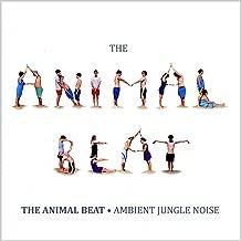 Ambient Jungle Noise