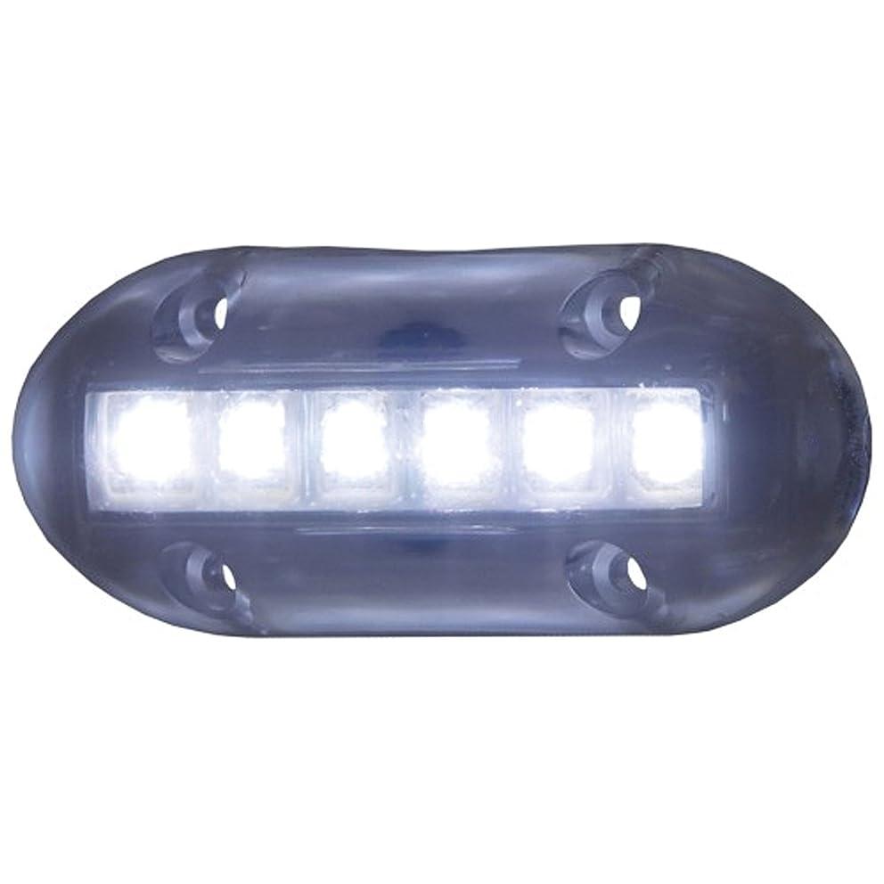 T-H Marine LED-51866-DP High-Intensity Underwater LED Lights - White