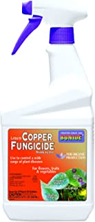 bonide liquid copper fungicide concentrate instructions