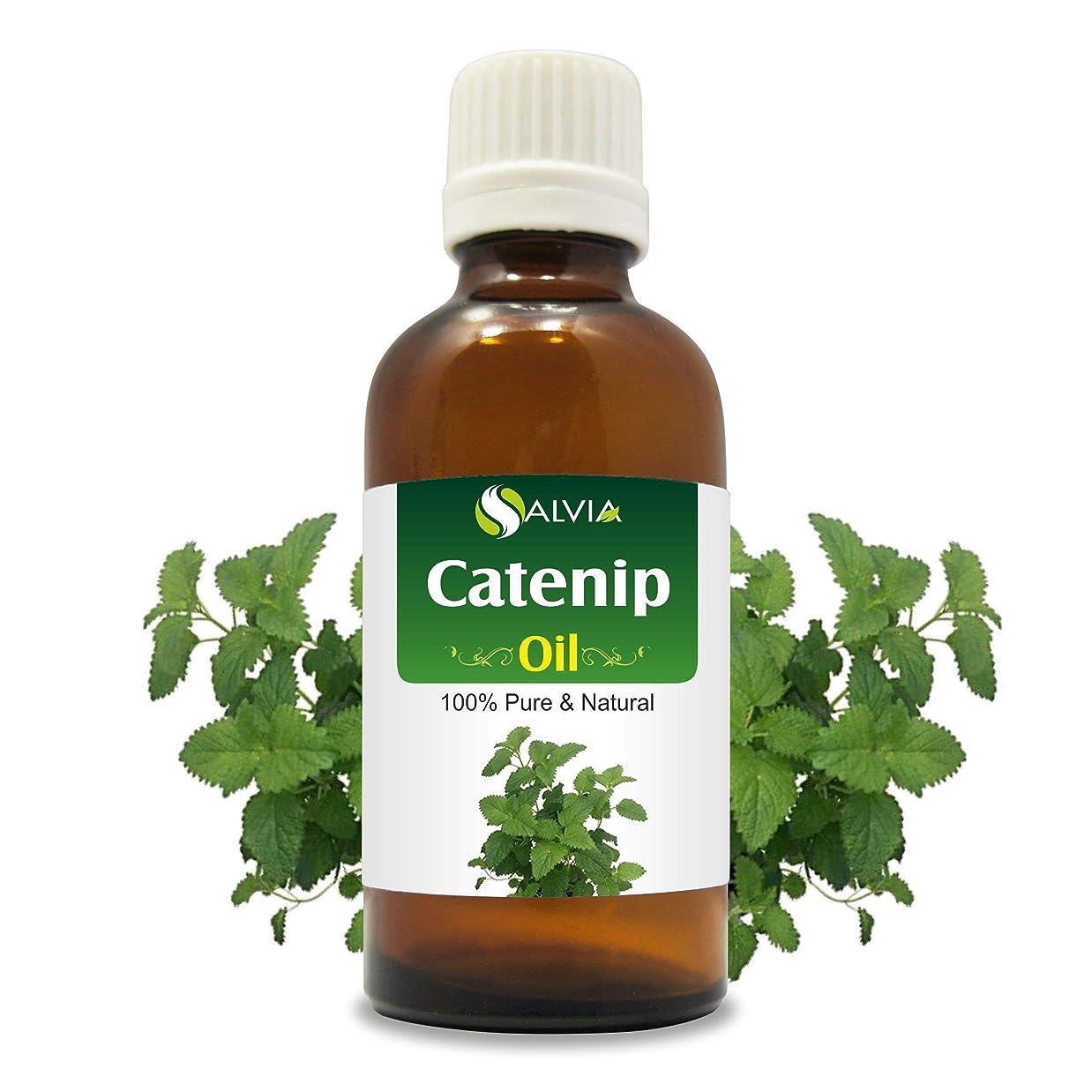 浜辺ヒロイック眉をひそめるCatnip Oil (Nepeta cataria) 100% Natural Pure Undiluted Uncut Essential Oil 50ml