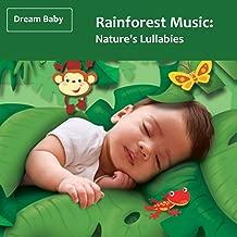 Rainforest Music: Nature's Lullabies