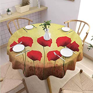 DILITECK Poppy Terrace Round Tablecloth Poppies on Old Aged Retro Featured Backdrop Design Past Days Drama Petals Picnic Diameter 54″ Scarlet Pale Yellow