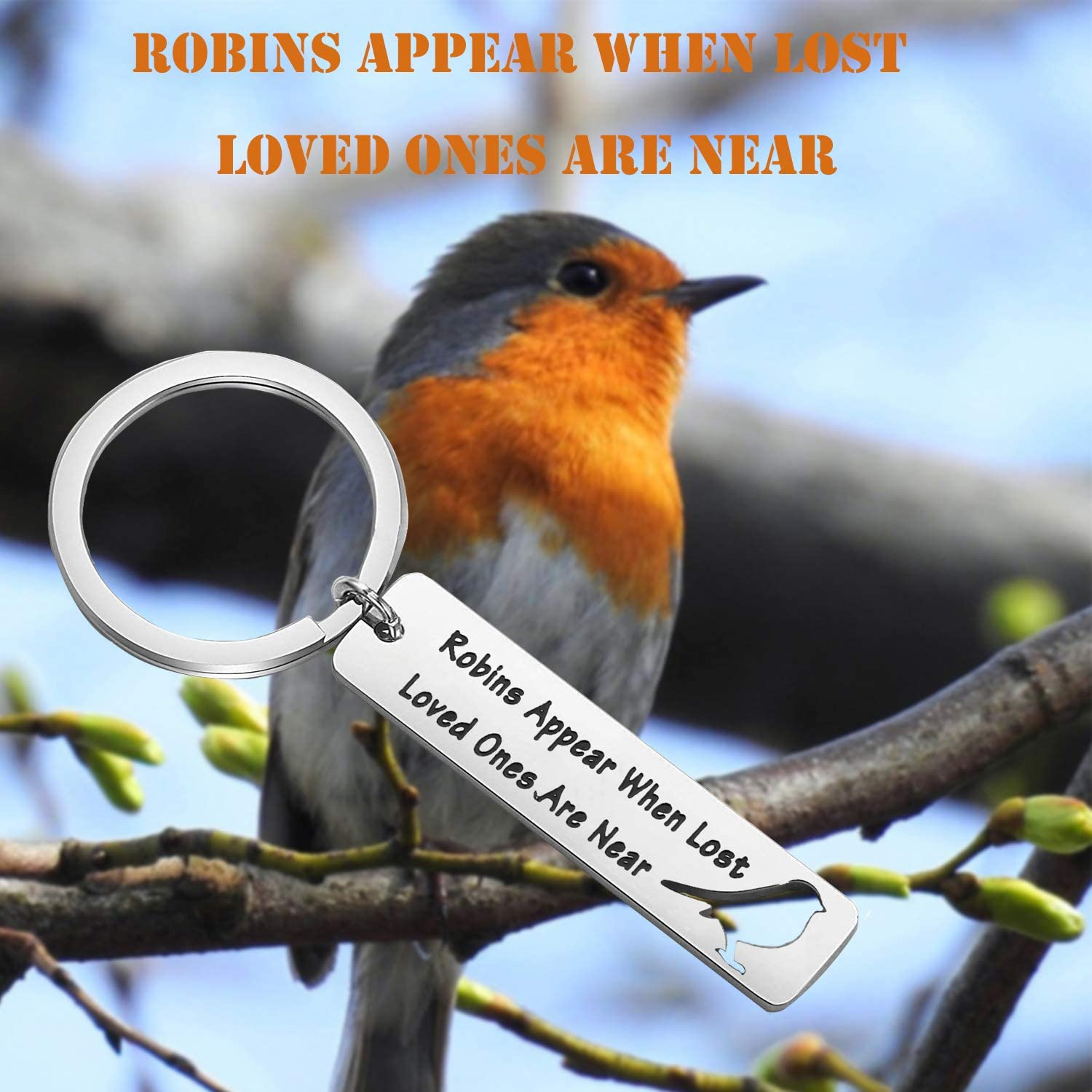 PLITI Memorial Gift Robins Appear When Lost Loved Ones are Near Keychain Gifts for Loss of Loved One
