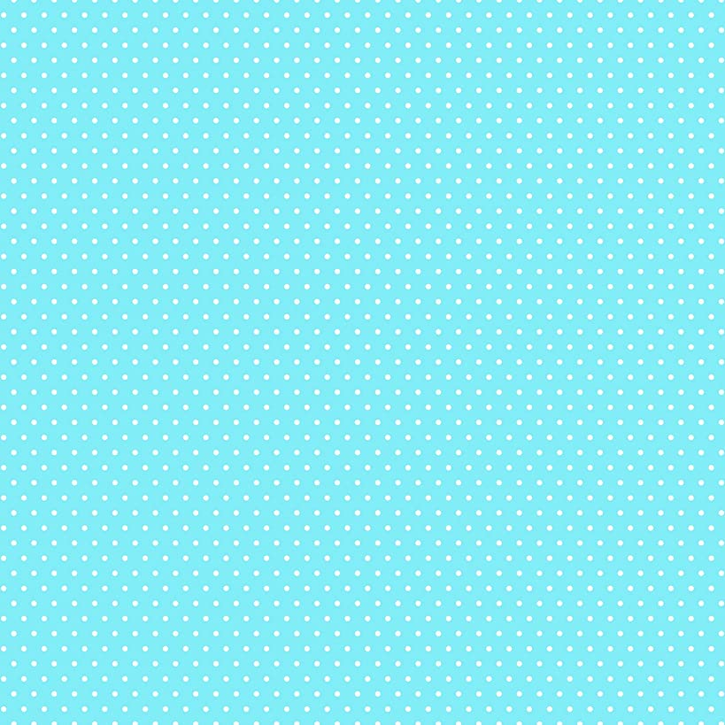 American Crafts Core'dinations 12 Pack of 12 x 12 Inch Patterned Paper Light Blue Small Dot,