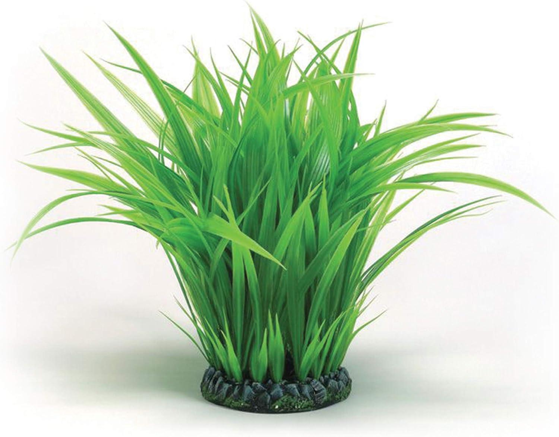 BiOrb Large Grass Ring (biUbe or Mega)