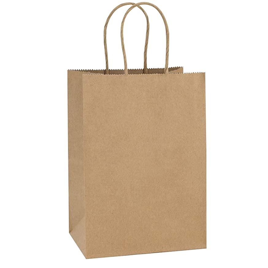 Flexicore Packaging | Brown Kraft Paper Gift Shopping Bags | Size: 10