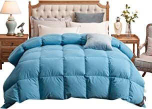 Royoliving Premium Silver Down Comforter Queen Full Size Luxurious Turquoise 100% Egyptian Cotton Cover Down Proof 750 Fill Power Winter Duvet Insert with Corner Tabs, 60 Oz