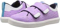 Lavender Purple CT/Shell White