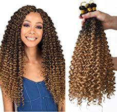 Passion twist crochet hair water wave 5 Pack Synthetic Natural Braids for women Water wave crochet braids (20inch, T27)…
