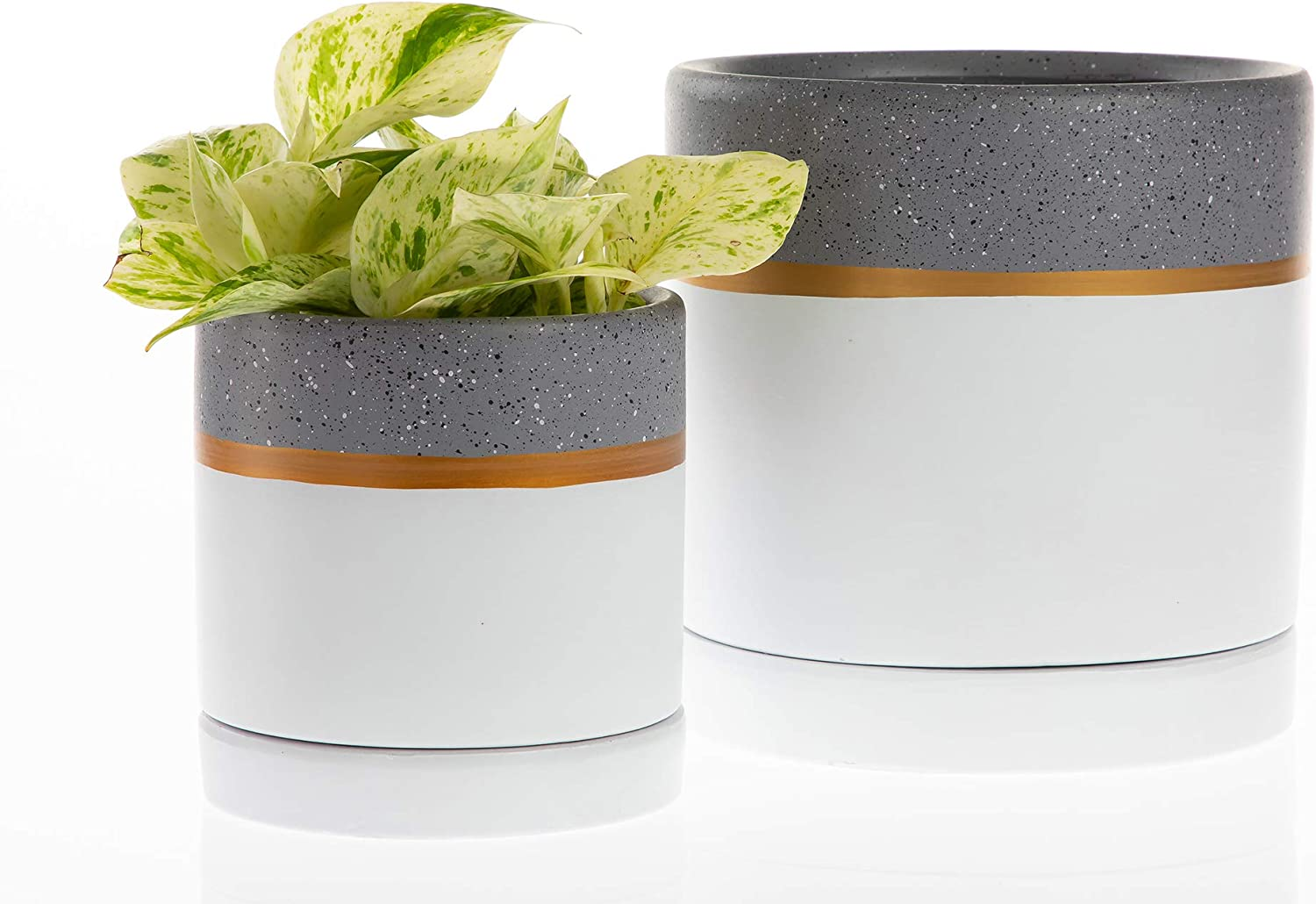 Chrissy Ceramic Pot price with Saucer Modern Decor Ranking TOP20 Home or O for