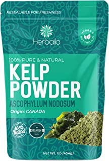 Kelp Powder 1 Lb, Natural Iodine Supplement (High Fiber) Raw Kelp Seaweed Extract from Canada, 100% Pure, non-GMO, Gluten-...