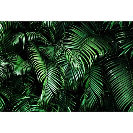 Yeele 6x4ft Tropical Photography Background Tropical Palm Leaves Painting Drawing Flamingo Blooming Pink Flower Summer Life Party Photo Backdrops Portrait Shooting Studio Props