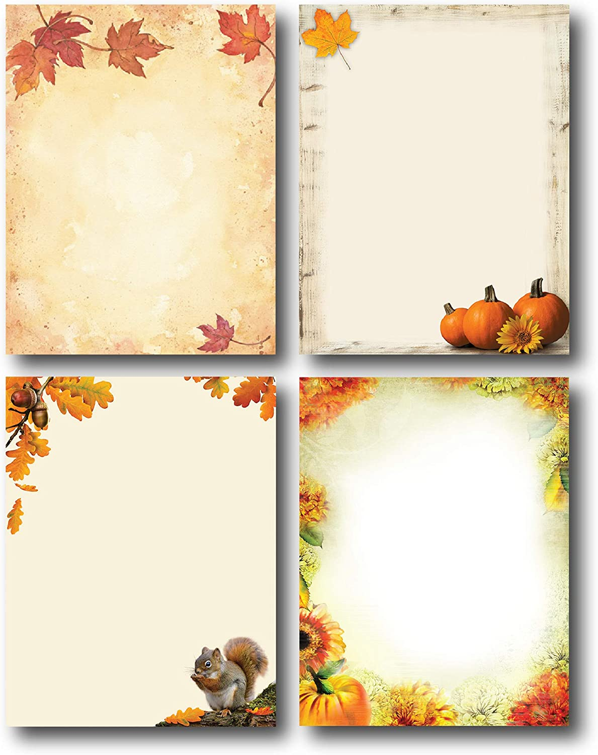 Fall Favorites free Stationery Special price for a limited time Variety Pack Autumn 4 - Desi Beautiful