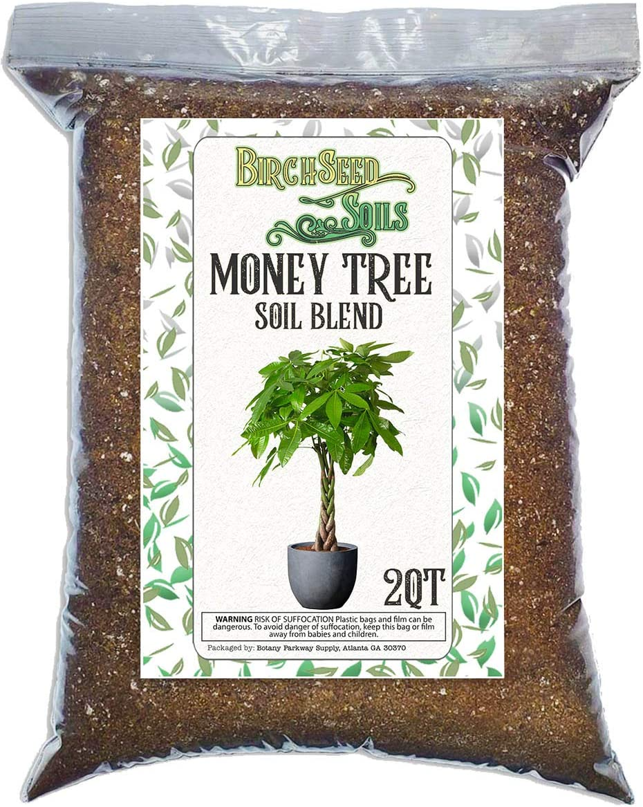 Money Tree Soil Blend All Natural Re Formulated for New mail order Special Campaign Mixture