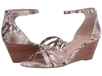 Charles by Charles David Gwenyth (Taupe Multi) Women