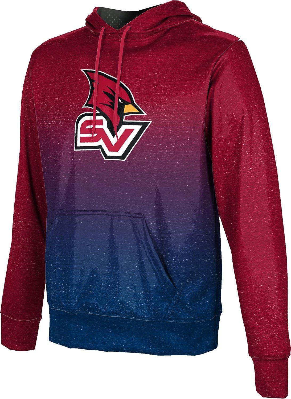 ProSphere Saginaw Valley State University Boys' Pullover Hoodie, School Spirit Sweatshirt (Ombre)