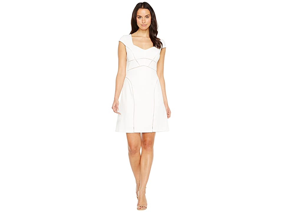 Adrianna Papell Knit Crepe Netting Insert A-Line Dress (Ivory/Pale Pink) Women