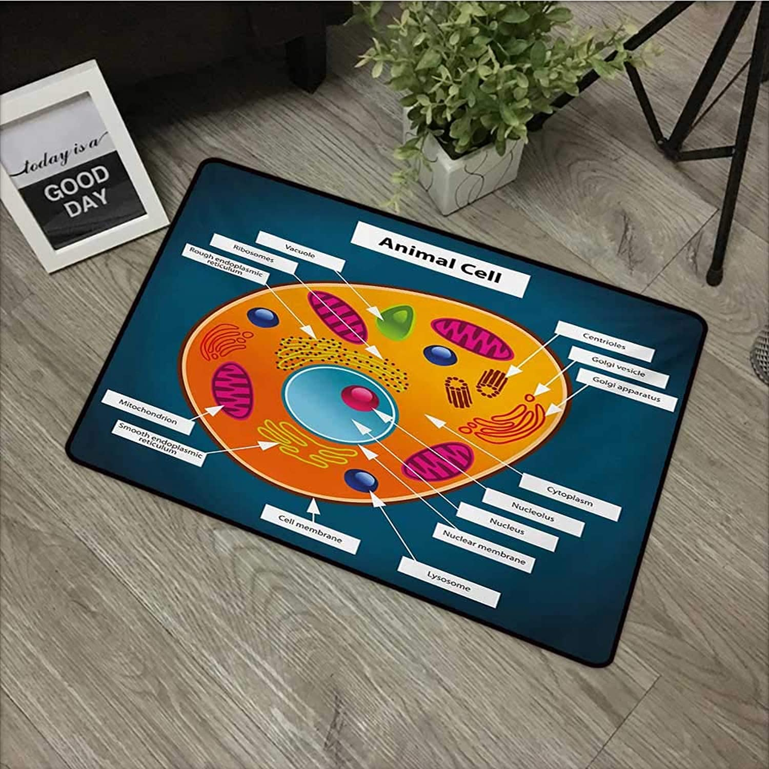 Interior mat W31 x L47 INCH Educational,Science at School Cell of an Animal colorful Display Medical Studies Nucleus,Multicolor Non-Slip, with Non-Slip Backing,Non-Slip Door Mat Carpet