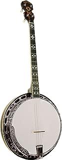 gold tone tenor banjo