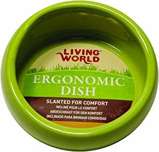 Living World Ergonomic Dish