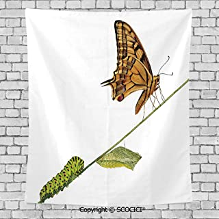 SCOCICI Popular Flexible Hot Tapestries Privacy Decoration,Swallowtail Colorful,Pupae Lifes Stages Inspirational Nature Decorative,Brown Green
