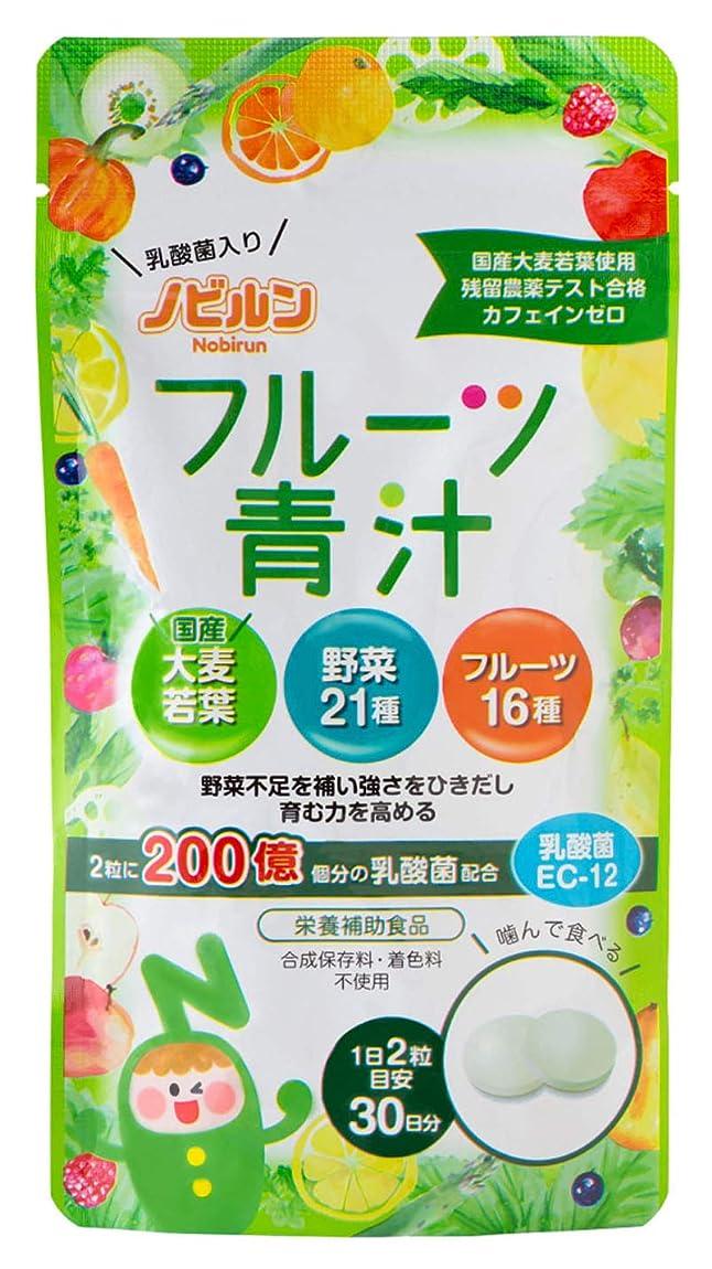 メーターええマイコンノビルン フルーツ青汁 乳酸菌 EC-12 国産 野菜サプリ 60粒(30日分) 栄養補助食品