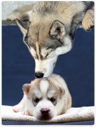 featured product SXCHEN Flannel Blanket Throw Lightweight Cozy Plush Cute Husky Kiss Baby Puppy Dog 60x80