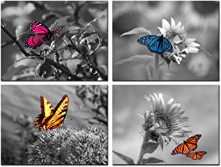 Biuteawal - 4 Panel Art Wall Decor Color Butterfly on Sunflower Picture Black and White Wall Art Flower Prints Posters Contemporary Canvas Artwork Framed Gallery Wrapped for Offical Home Decorations