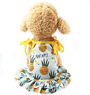 BBEART Pet Clothes,Lovely Summer Fruit Dog T-Shirt Puppy Clothes Dog Skirt Dress Cats Clothes for Small Dogs Cats Puppy