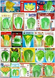 10# Baby Cabbage 10g : Cabbage Seeds Large Original Colorful Retail Package Garden Vegetable 春秋大白菜娃娃菜种子
