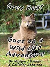 Grey Bear Goes on a Wild Life Adventure (The Rescued Cats' Adventure Series Book 4) (English Edition)