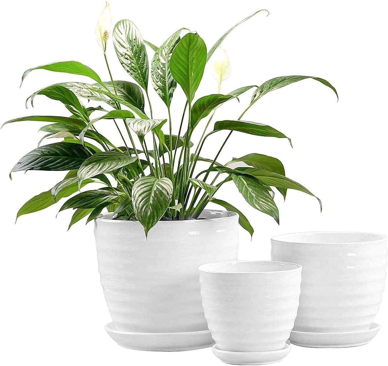 Fasmov Juego de 3 Macetas para Flores Cerámica con Agujero De Drenaje para DecoracióN del Hogar, Blanco(17cm/13,5cm/10cm)