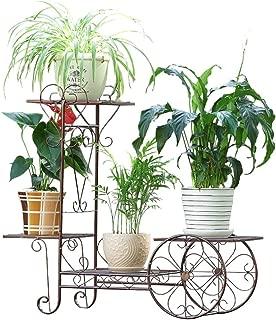Amazon.es: AIFANG - Soportes para plantas / Huertos urbanos y ...