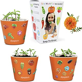 Window Garden - Sow Much Fun Seed Starting (Marigold) – Flower Planting and Growing Kit for Kids, 3 Self Watering Planters, Soil, Seeds and Adorable Puffy Stickers. No Mess, Super Easy and Works Great