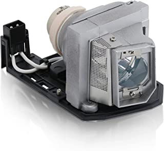 Rich Lighting プロジェクター ランプ SP.8RU01GC01 OPTOMA オプトマ HD25LV HD25-LV HD30 DH1011 HD131X HD25 HD2500 HD30B HD25LVS1 対応【180日保証】